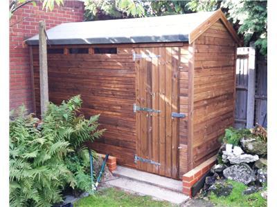 11x5 HiPex-B Beast wood Garden shed